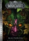 """Nowa powieść z kolekcjonerskiej serii Blizzard Legends – """"Malfurion"""" już wkrótce w księgarniach"""